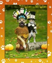 thanksgiving-pets-2