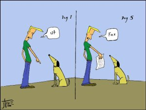 dog_training-cartoon