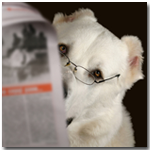 Mutt Reading
