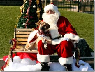 Libby & Santa 2009