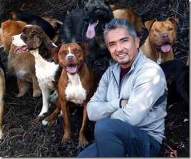 Cesar-Millan-Pet-Psychology