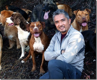 Cesar-Millan-Pet-Psychology