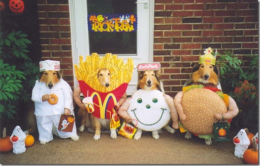 Fast Food Dogs