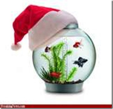 Santa fishbowl with hat