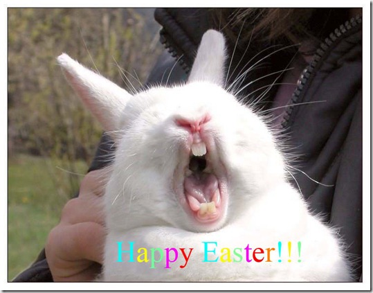 Easter_Bunny_Laughing