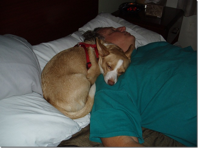 Napping wi Dad... My Best Friend