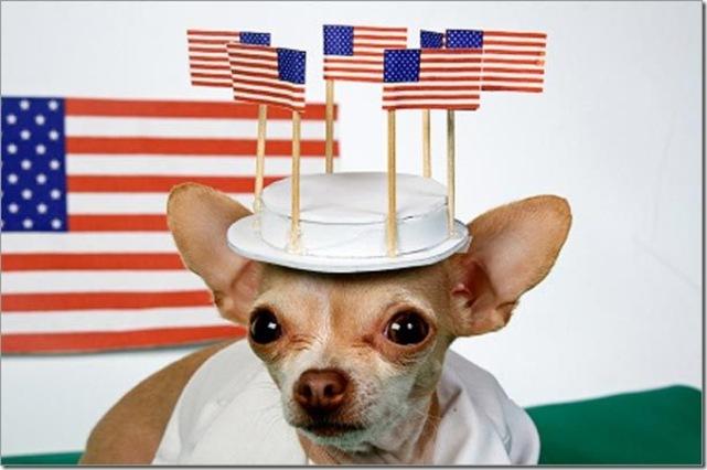 Patriotic Chi