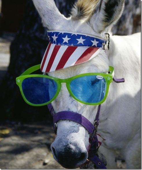 Patriotic Donkey