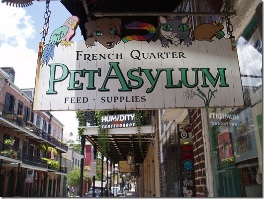 Pet Asylum French Quarter - 05-19-12 - 2