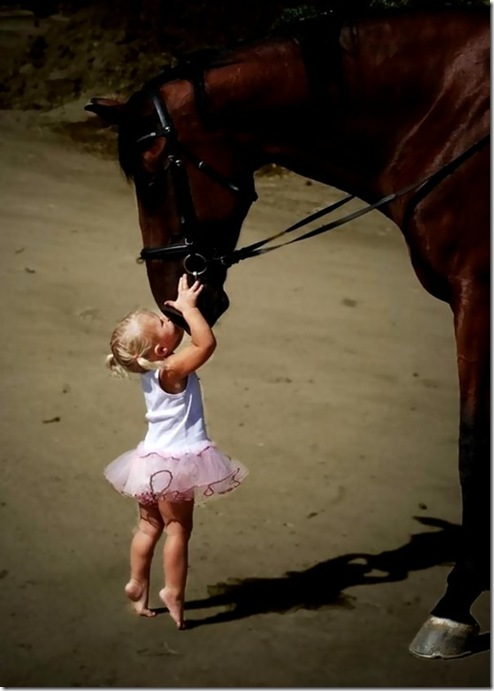 little ballerina wi horse