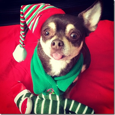 Santa-Helper