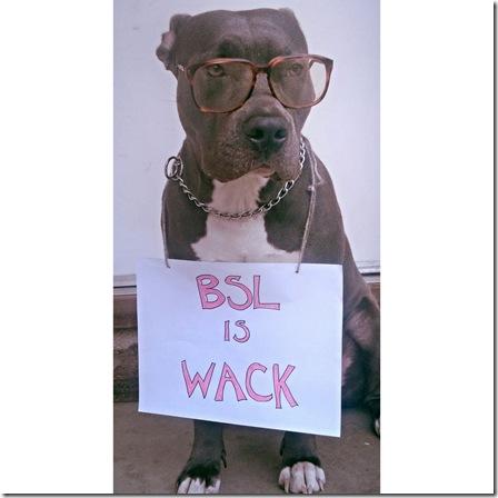 bsl-is-wack
