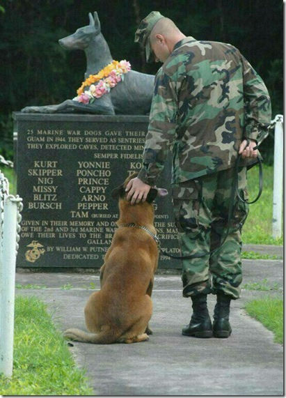 Hero War Dogs